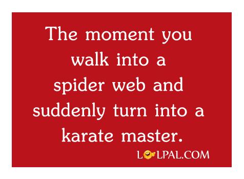 karate-master
