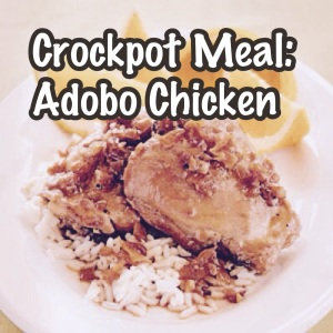 Crockpot crock pot slow cooker meal prep chicken cheap delicious easy